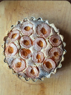 Apricot and cherry frangipane tart